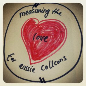 Please do this survey https://www.surveymonkey.com/aussie_collcons #sharing #collcons