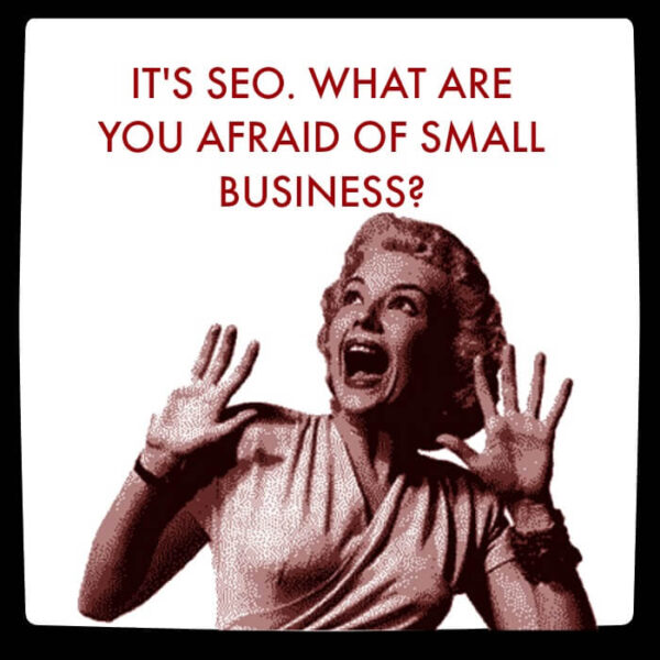 It's SEO. What are you afraid of small business?
