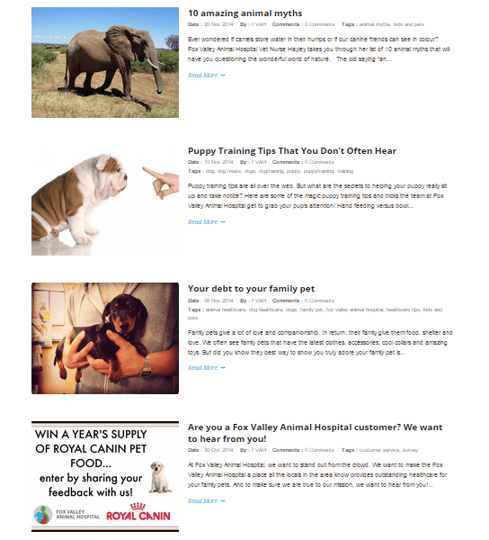 fox valley animal hospital blog and content planning