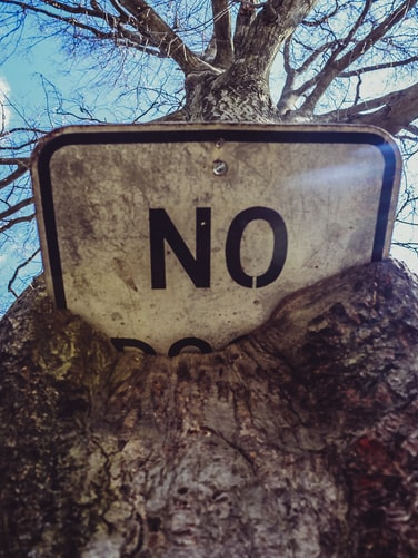 a roadsign that says no has been overgrown in a tree. it juts out, a little like the hidden mental health stigma in society