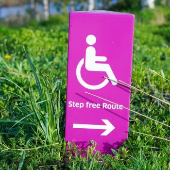 "A wheelchair symbol is on a sign. The symbol is above the words ""step free route"" with an arrow pointing right. It is in lumpy grass."